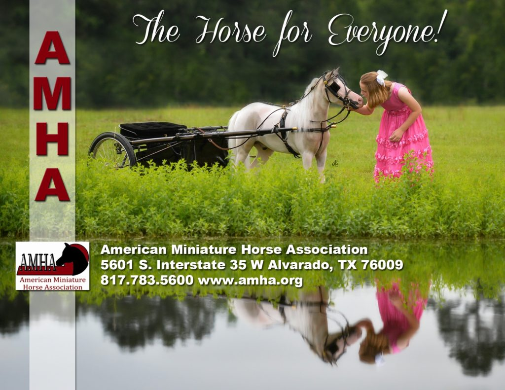 American Miniature Horse Association