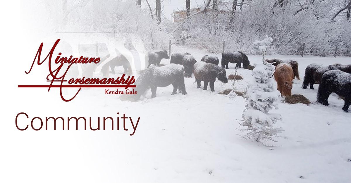 MH-community