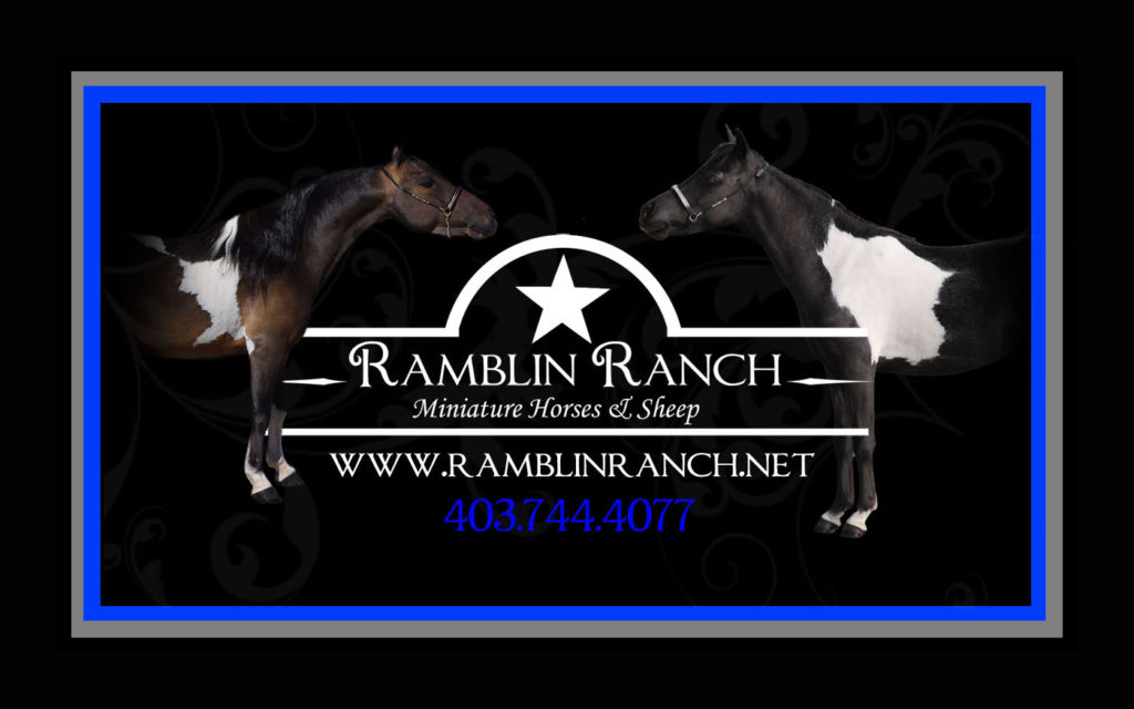 Ramblin Ranch