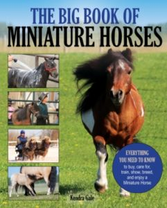 Big Book of Miniature Horses