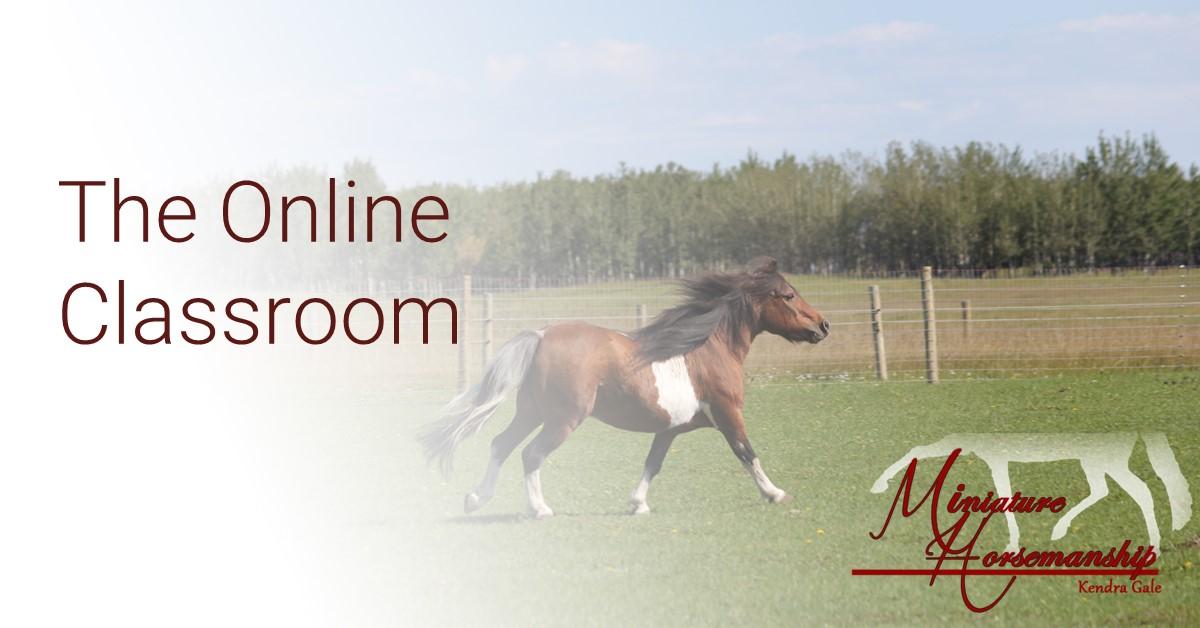 MH-Online Classroom